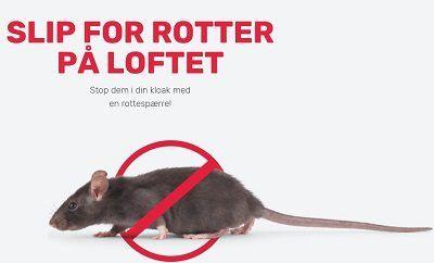 Slip for rotter på loftet