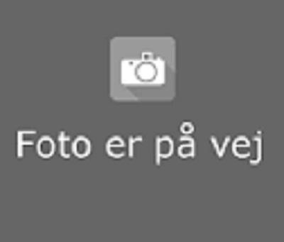 Ole Barkholt